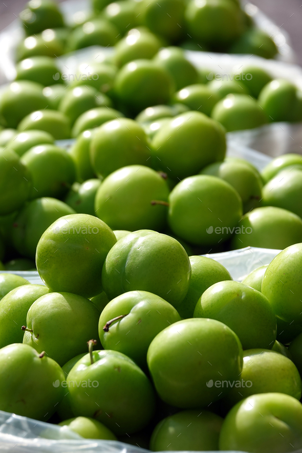 Organic Fruit Plum - Stock Photo - Images