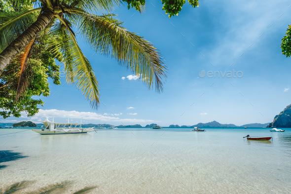 El Nido, Palawan island, Philippines. Palm trees of Corong Corong beach, island hopping boats in - Stock Photo - Images