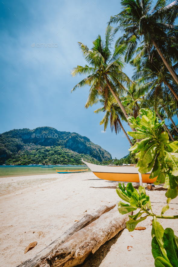 Philippines beach landscape - Local banca boat under palm trees at Corong Corong beach in El Nido - Stock Photo - Images