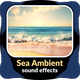 Sea Ambient Sound Effects