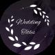 Elegant Wedding Titles - VideoHive Item for Sale