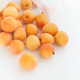 Apricots rolling out of a plastic bag - PhotoDune Item for Sale