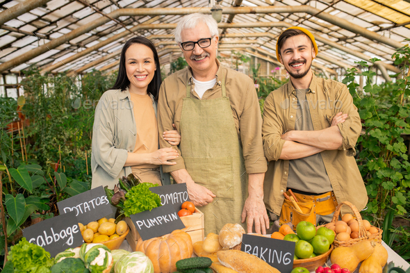 Coworkers at farmers market - Stock Photo - Images