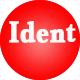 Indie Rock Ident