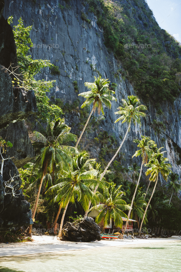 El Nido, Palawan, Philippines. Secluded tropical hut under palm trees on Pinagbuyutan Island - Stock Photo - Images