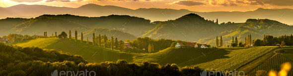 South styria vineyards landscape, near Gamlitz, Austria, Eckberg, Europe. Grape hills view from wine - Stock Photo - Images