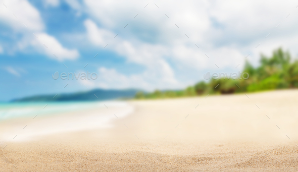 Tropical beach with palms - Stock Photo - Images