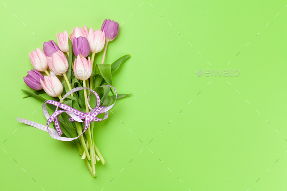 Pink tulips over green background - Stock Photo - Images