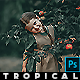 Tropical  Photoshop Actions