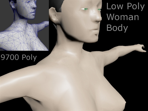 Low Poly Woman Body - 3DOcean Item for Sale