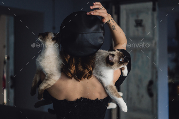 Woman with two siamese cats - Stock Photo - Images