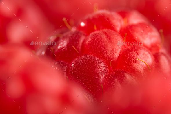 Fresh sweet raspberries close up background. Blured background macro. - Stock Photo - Images
