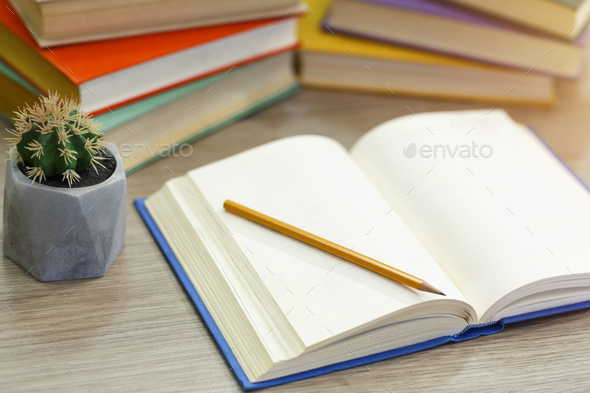 Close up of open book with pen and cactus - Stock Photo - Images