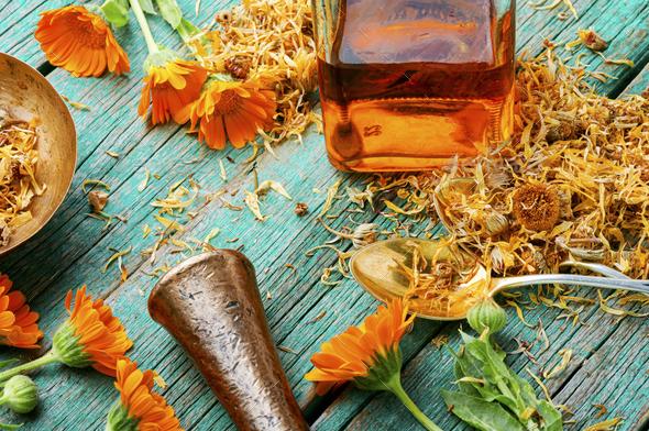 Calendula healing herbs - Stock Photo - Images