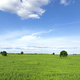 Green meadow with blue sky - PhotoDune Item for Sale