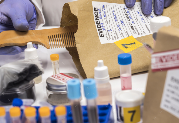 Scientist Police hold murder victim comb to find dna in crime lab, concept image - Stock Photo - Images