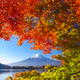 Mountain fuji with red maple in Autumn, Kawaguchiko Lake, Japan - PhotoDune Item for Sale