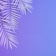 Neon colored palm leaves - PhotoDune Item for Sale