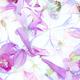 Violet Tender Floral Pattern - PhotoDune Item for Sale