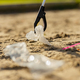 Close-up up of volunteer picking up garbage with grabber at beach - PhotoDune Item for Sale