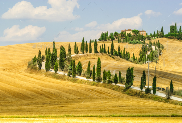 Old farm in Val d'Orcia (Tuscany) - Stock Photo - Images