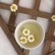 White chrysanthemum flower - PhotoDune Item for Sale
