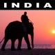 India Discovery Journey