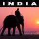 India Inspiration Journey