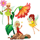 Fairies of Flowers Story of a Fairy Tale