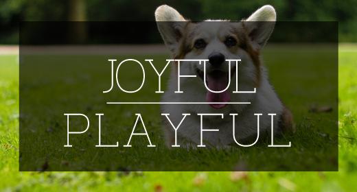 Joyful & Playful
