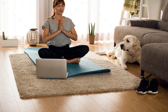 Doing exercise with my lazy dog - Stock Photo - Images