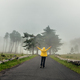 Walking on a foggy road - PhotoDune Item for Sale