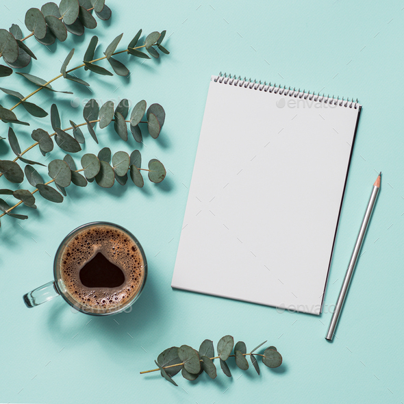 Blank paper notebook and eucalyptus. copy space - Stock Photo - Images