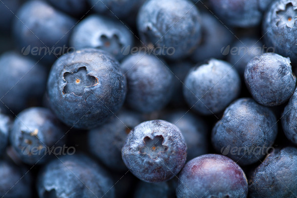 fresh blueberry background - Stock Photo - Images