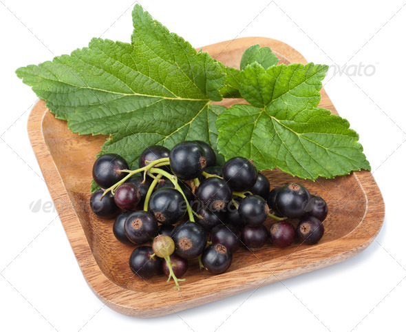 black currant in bowl isolated - Stock Photo - Images