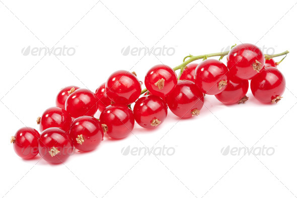 fresh redcurrant isolated - Stock Photo - Images