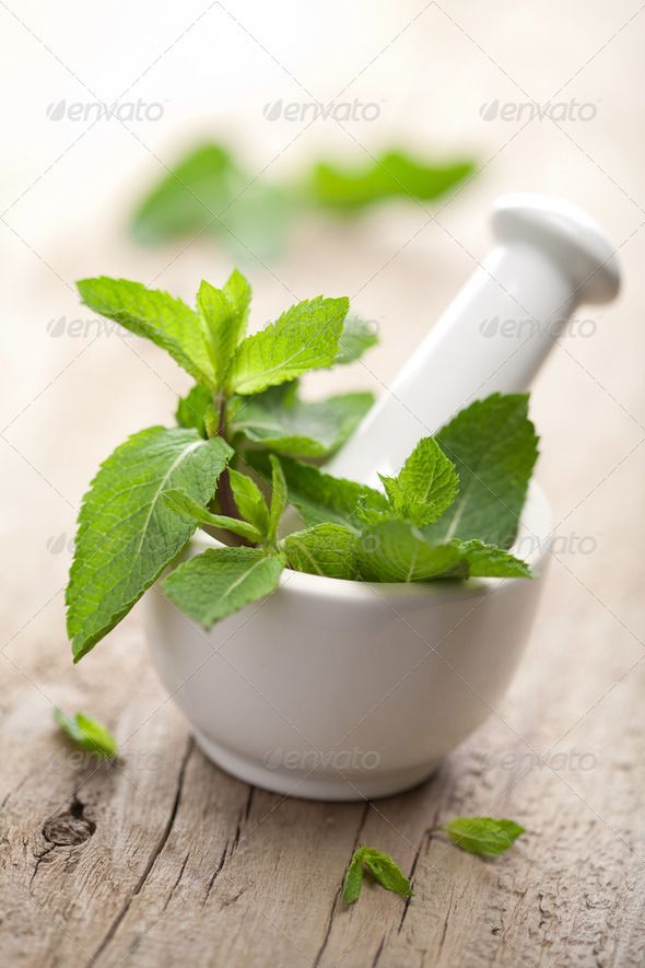 mortar with herbs - Stock Photo - Images