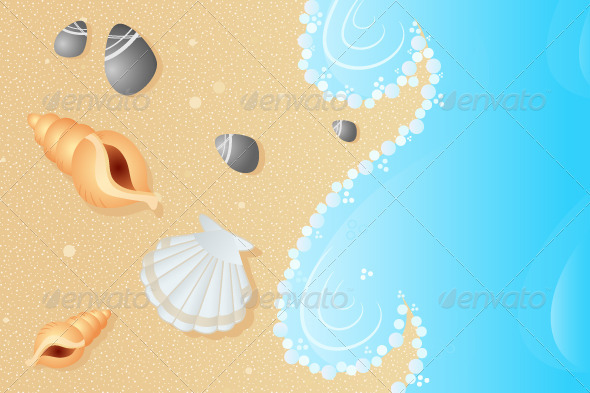 Seashells on a Beach - Decorative Vectors