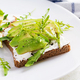 Sandwich of cream cheese bread and slices of avocado on a plate - PhotoDune Item for Sale