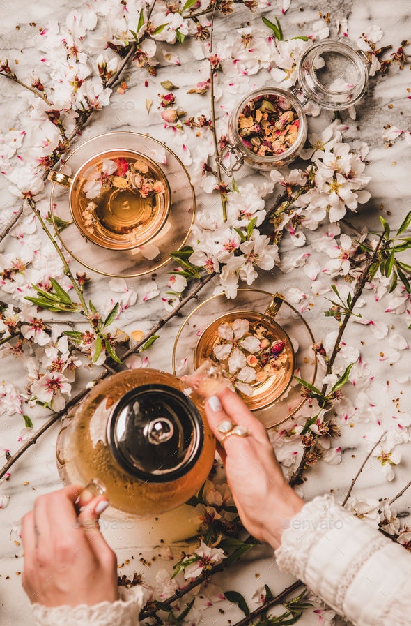 Female hands holding teapot with black tea over blossom flowers - Stock Photo - Images