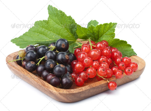 currant in bowl isolated - Stock Photo - Images