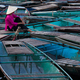 Lost in thought, a woman sits amidst a raft of boats. Ninh Binh, Vietnam - PhotoDune Item for Sale