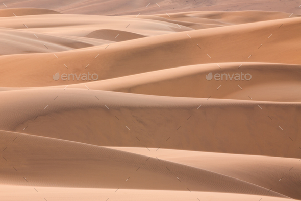 Namib Desert, Namibia - Stock Photo - Images