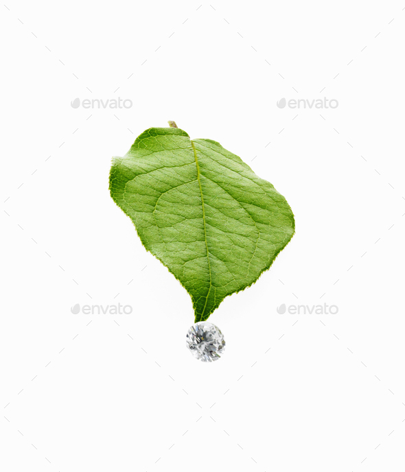 Still life, Green leaf foliage and gems cut with reflective surfaces, - Stock Photo - Images