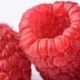 Raspberry closeup - PhotoDune Item for Sale
