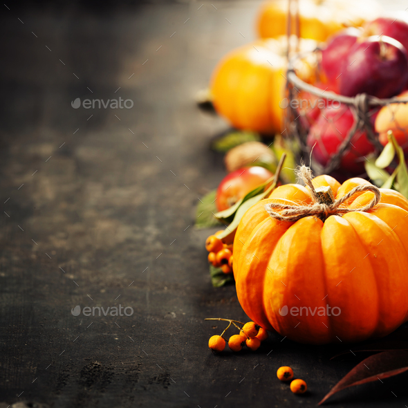 Rustic fall greeting card background with pumpkins, berries, apples - Stock Photo - Images