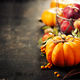 Rustic fall greeting card background with pumpkins, berries, apples - PhotoDune Item for Sale