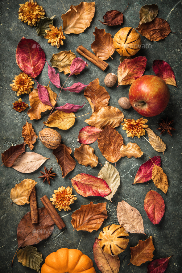 Autumn leaves, fruits and spices over green vintage background - Stock Photo - Images