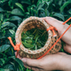 Vertical shot of a female collecting tea leaves - PhotoDune Item for Sale