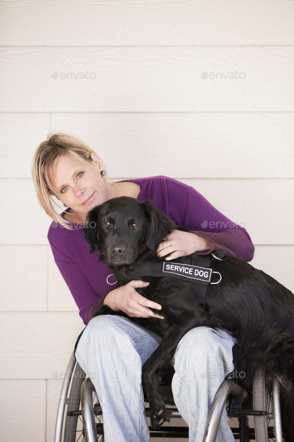 A mature woman wheelchair user with her arms around her black labrador service dog. - Stock Photo - Images